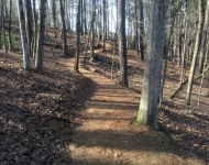 Hiking trails at nearby Redtop Mountain
